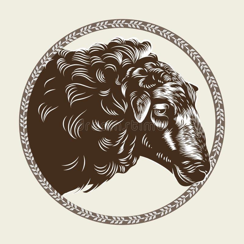 Vektorbild av ett fårs huvud i stilen av gravyr Jordbruks- tappningemblem royaltyfri illustrationer