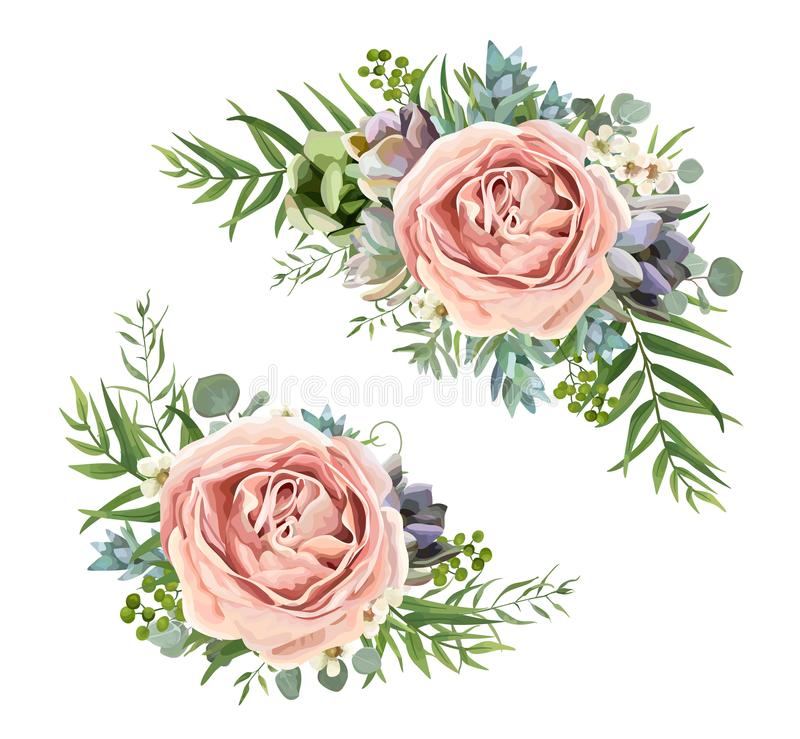 Vektorblumenstraußdesign: Gartenrosa-Pfirsichlavendel Rosen-wa stock abbildung