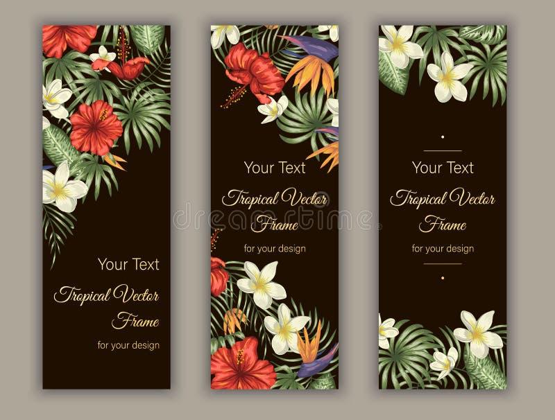 Vektorbokmärker med gröna tropiska sidor, plumeria, strelitzia och hibiskusblommor på svart bakgrund royaltyfri illustrationer