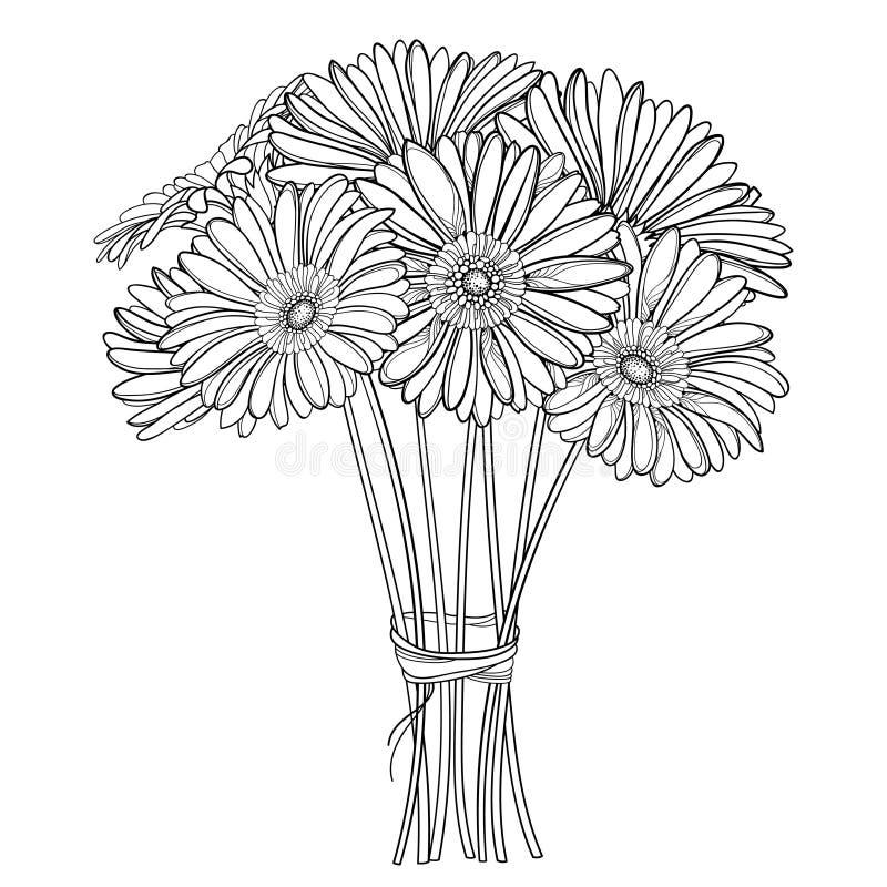 Vektorbukett av den översiktsgerbera- eller Gerber blomman i svart som isoleras på vit bakgrund Grupp av gerberaen för konturträd royaltyfri illustrationer
