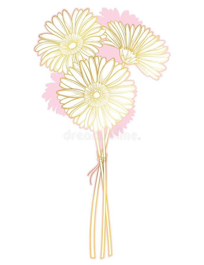 Vektorbukett av den gerbera- eller Gerber för översikt tre blomman i pastellfärgade rosa färger och guld som isoleras på vit bakg stock illustrationer