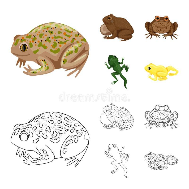 Vektordesign av djurliv- och myrsymbolen Samling av djurliv- och reptilmaterielsymbolet f?r reng?ringsduk stock illustrationer