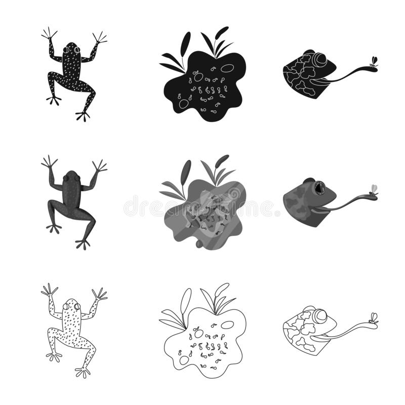Vektordesign av djurliv- och myrsymbolen St?ll in av illustration f?r djurliv- och reptilmaterielvektor royaltyfri illustrationer
