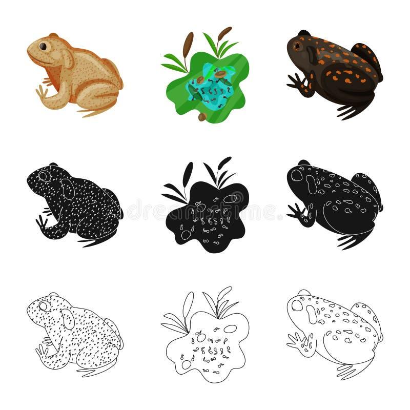 Vektordesign av djurliv- och myrsymbolen St?ll in av illustration f?r djurliv- och reptilmaterielvektor vektor illustrationer