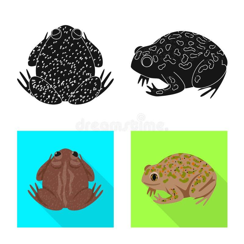 Vektordesign av djurliv- och myrsymbolet Samling av djurliv- och reptilmaterielsymbolet f?r reng?ringsduk royaltyfri illustrationer