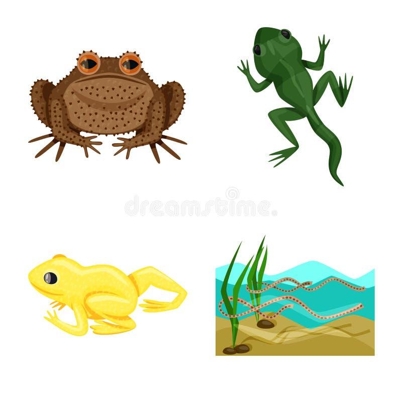 Vektordesign av grodan och den anuran symbolen Ställ in av grodan och den djura vektorsymbolen för materiel stock illustrationer