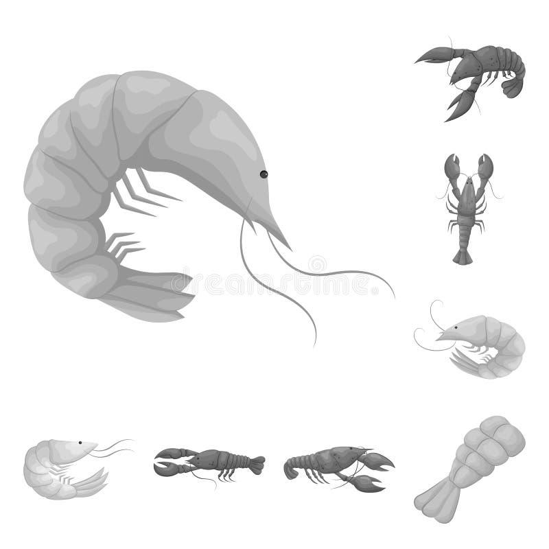Vektordesign av krabba- och aptitretaresymbolen St?ll in av krabba- och havsvektorsymbolen f?r materiel royaltyfri illustrationer