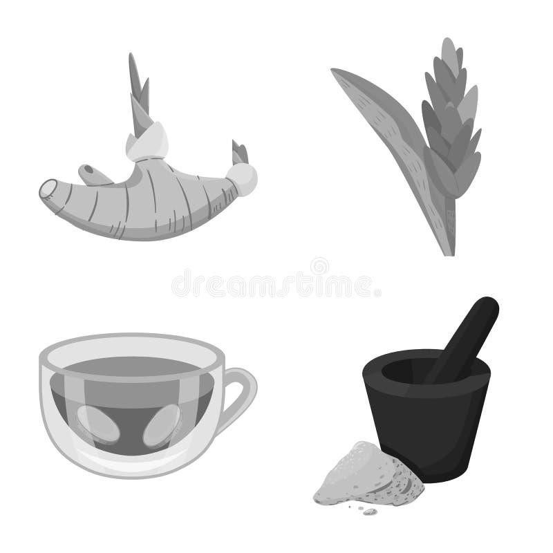 Vektordesign av krydda- och ingredienssymbolet Ställ in av krydda- och produktvektorsymbolen för materiel vektor illustrationer