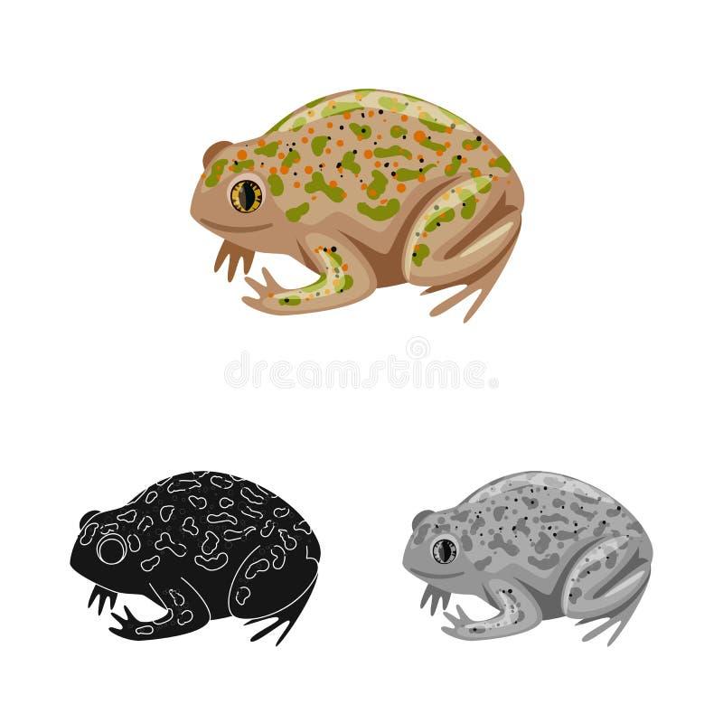 Vektordesign av paddan och den tropiska logoen Samling av paddan och grön vektorsymbol för materiel stock illustrationer