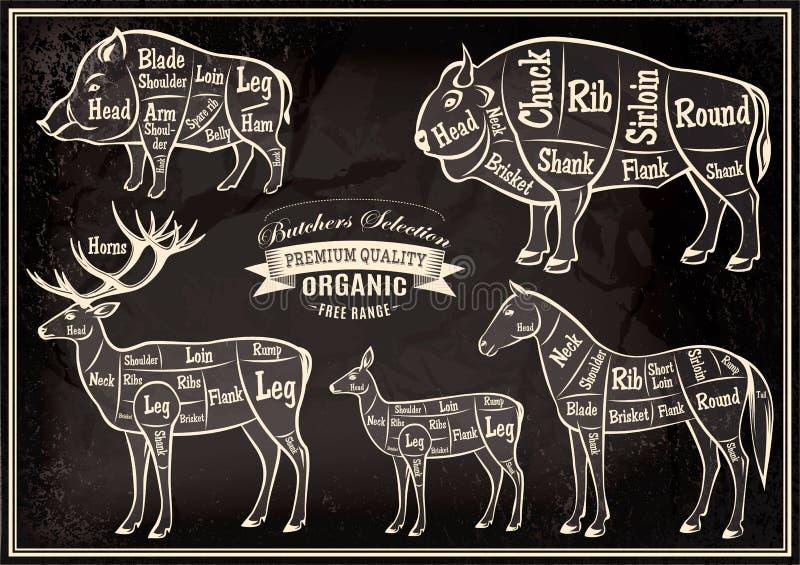 Vektordiagrammet klippte kadaver galten, bisonen, hjort, häst royaltyfri illustrationer