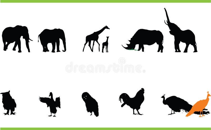 Vektordjursamling