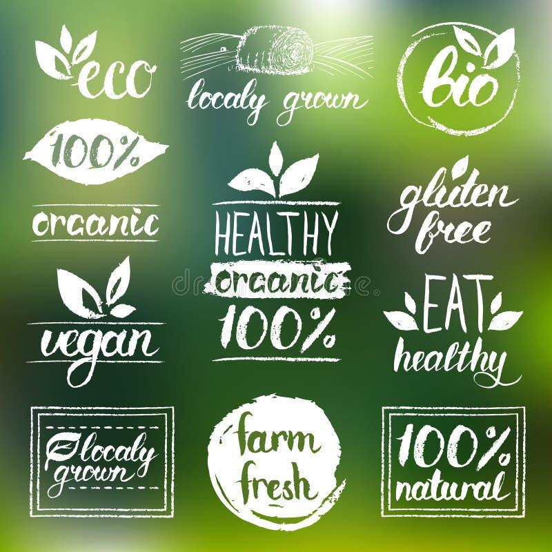 Vektoreco, organiska bio logoer Strikt vegetarian, naturlig mat och drinktecken Lantgårdmarknad, lagersymbolssamling Rå måletiket royaltyfri illustrationer