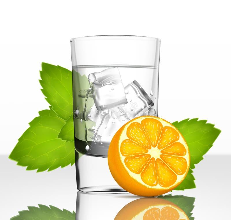 Vektorexponeringsglas av vatten med is, apelsinen och mintkaramellen royaltyfri illustrationer