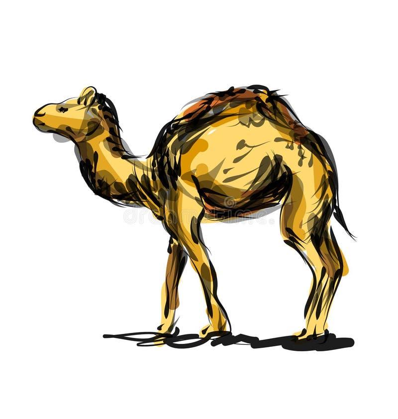 Vektorfärglinjen skissar en kamel royaltyfri illustrationer