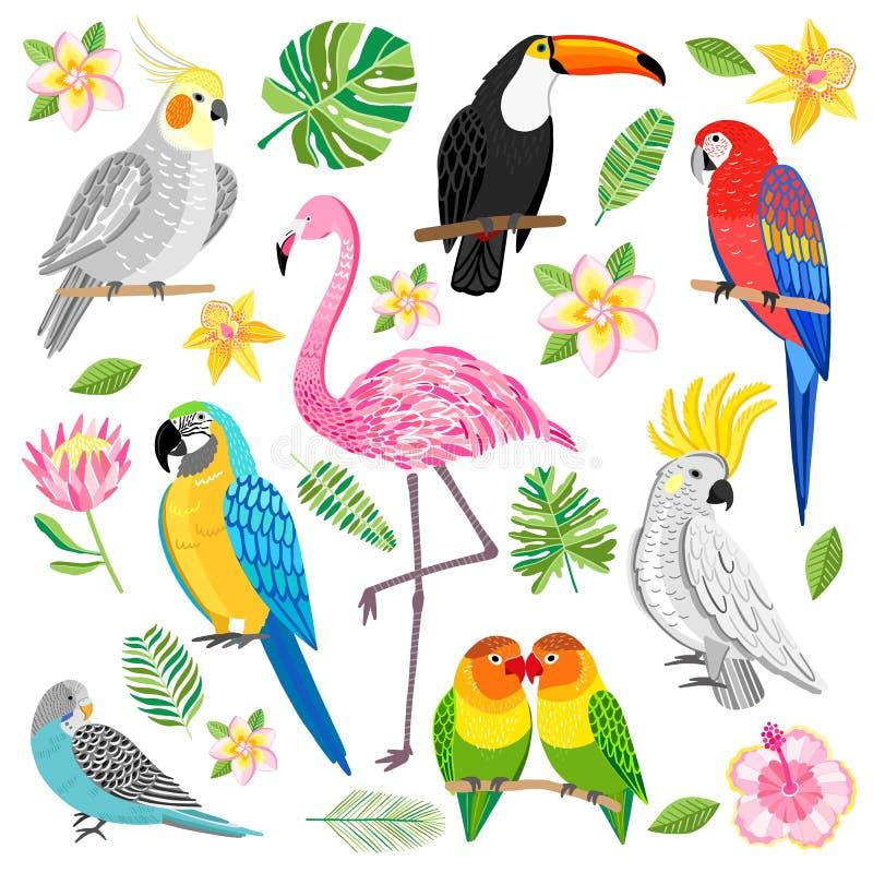 Vektorflamingo, tukan, papegojor tropiska fåglar stock illustrationer