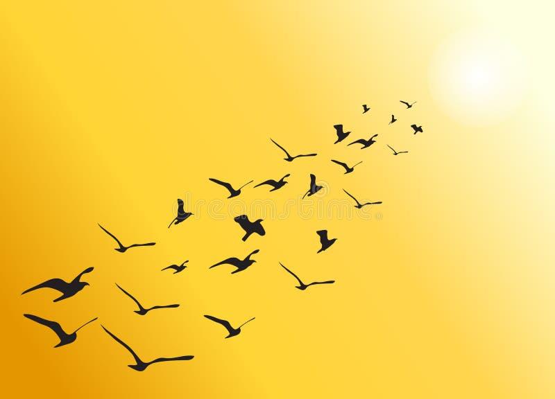 Vektorflock av flygfåglar in mot den ljusa solen vektor illustrationer