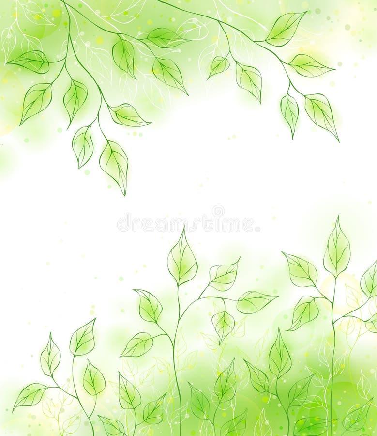 Vektorfrühling backgrond mit grünem Laub lizenzfreie abbildung