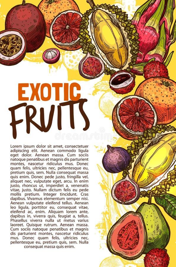 Vektorfruchtshop-Skizzenplakat von exotischen Früchten vektor abbildung