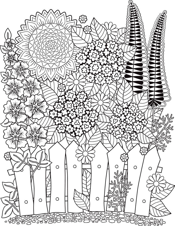 Vektorgekritzelsonnenblumen Malbuch für Erwachsenen Sommerblüte im Garten flowerbed stock abbildung