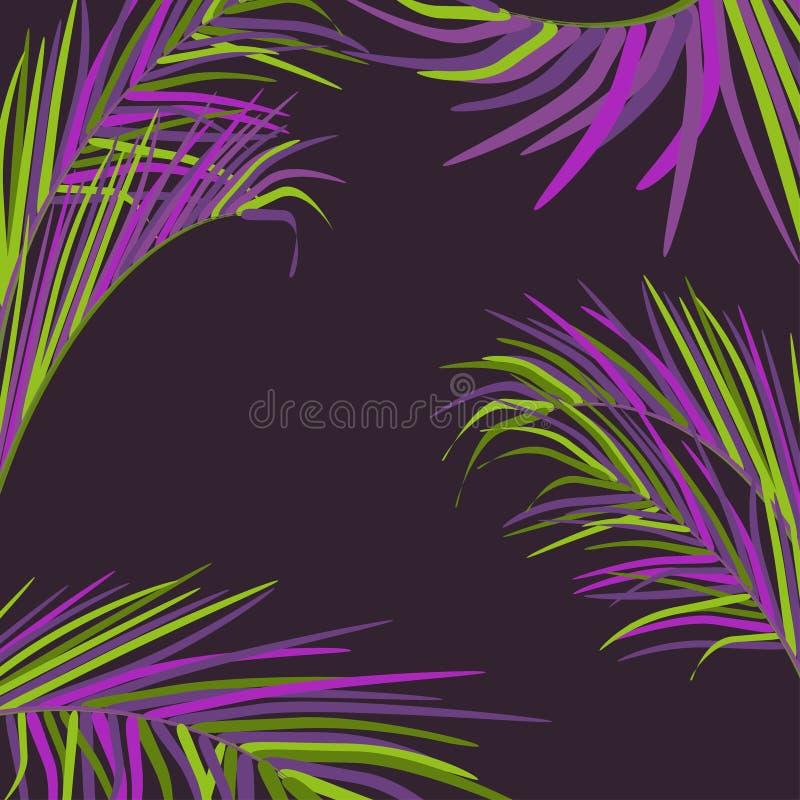 Vektorhintergrund mit dekorativen Palmblättern in den Tropen auf dunklem Hintergrund des nächtlichen Himmels Helle modische Neonf lizenzfreie abbildung