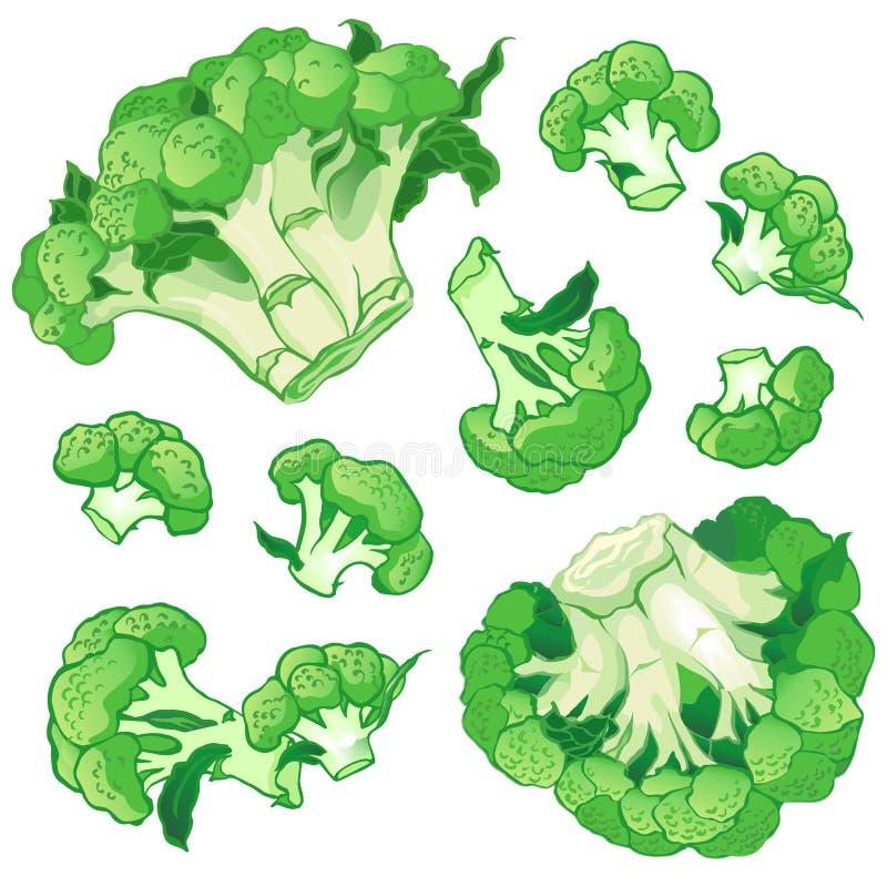 Vektorhintergrund mit einem Muster des Brokkolis lizenzfreie stockbilder