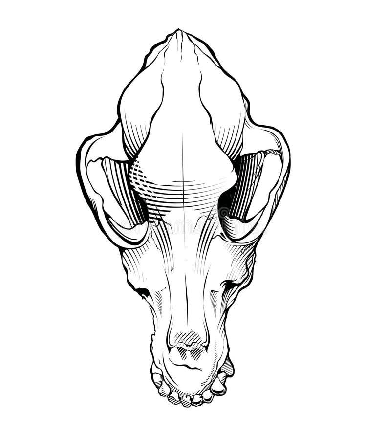 Vektorhundskalle Inrista stil stock illustrationer