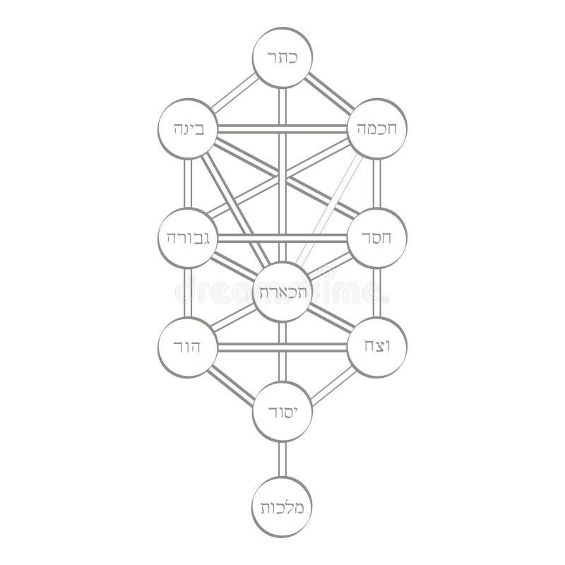 Vektorikone mit Baum von Leben Kabbalah-Symbol vektor abbildung