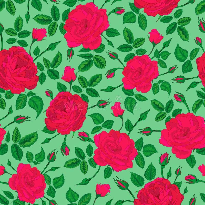 Vektorillustration auf rosa Rosenbusch mit nahtlosem Wiederholungsmuster der Knospen und der Blätter lizenzfreie abbildung
