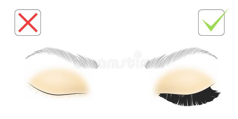 Vektorillustration av ögonfransförlängningar Illustration av ögonfransförlängningen: före och efter vektor illustrationer