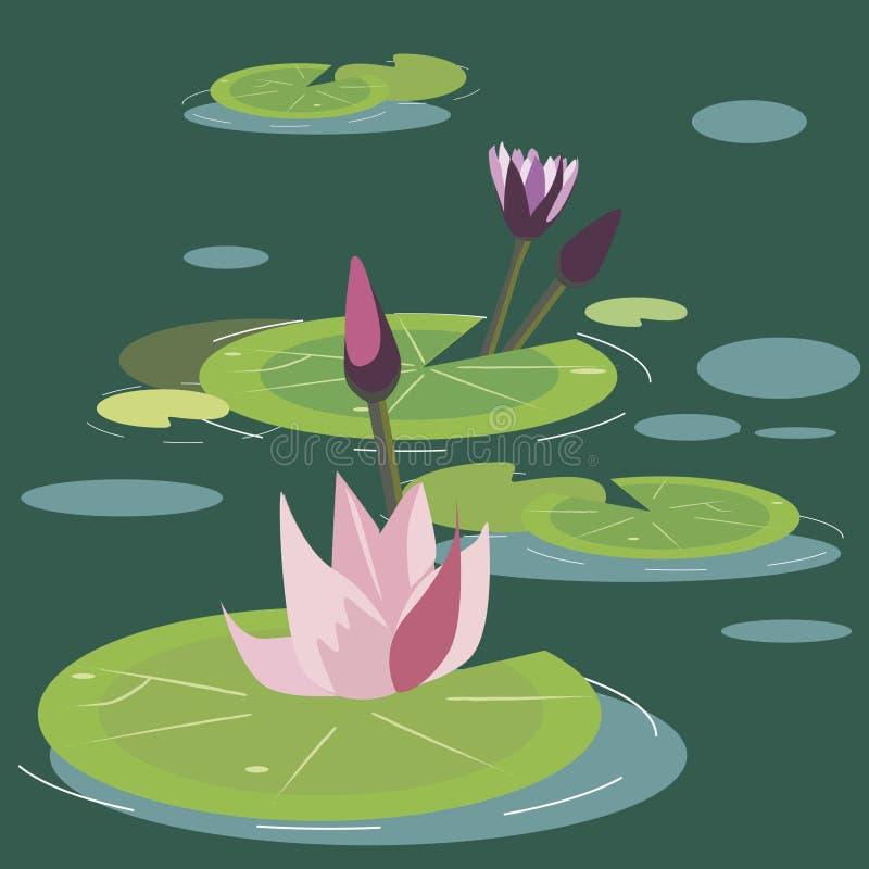 Blomstra lotuses på en myr royaltyfri illustrationer
