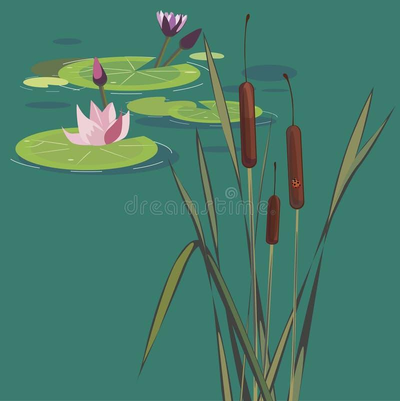 Blomstra lotuses på en myr vektor illustrationer