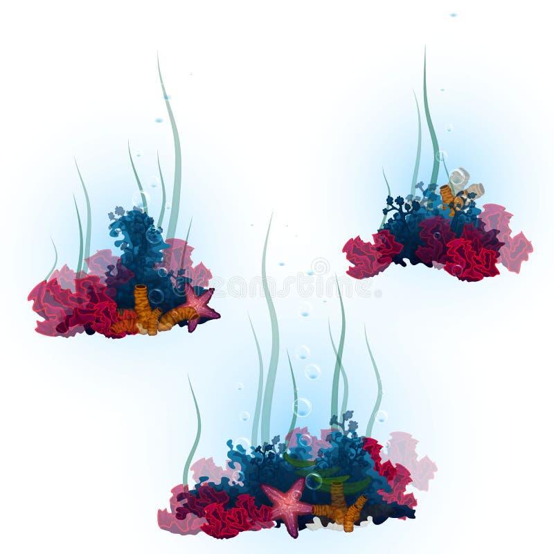 Vektorillustration av dekorativa koraller och stock illustrationer