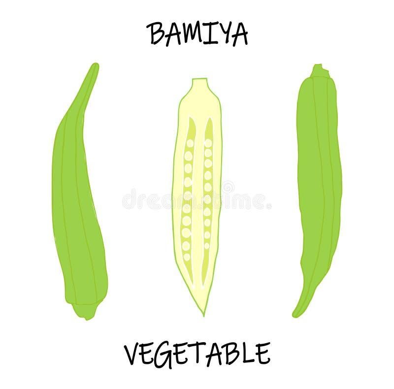 Vektorillustration av den afrikanska grönsaken - ätliga Abelmosh, Bamiya, okragombo royaltyfri illustrationer