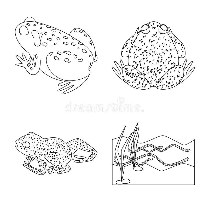 Vektorillustration av den amfibiska och djura symbolen Samling av amfibie- och naturvektorsymbolen f?r materiel vektor illustrationer