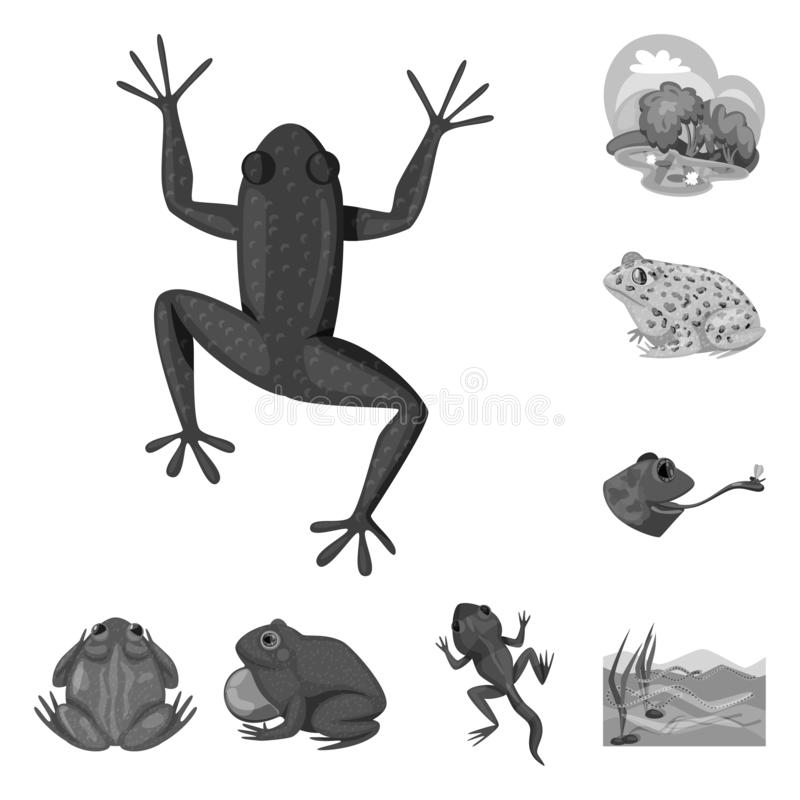 Vektorillustration av den l?s och natursymbolen St?ll in av l?s och f?r myrmaterielvektor illustration stock illustrationer