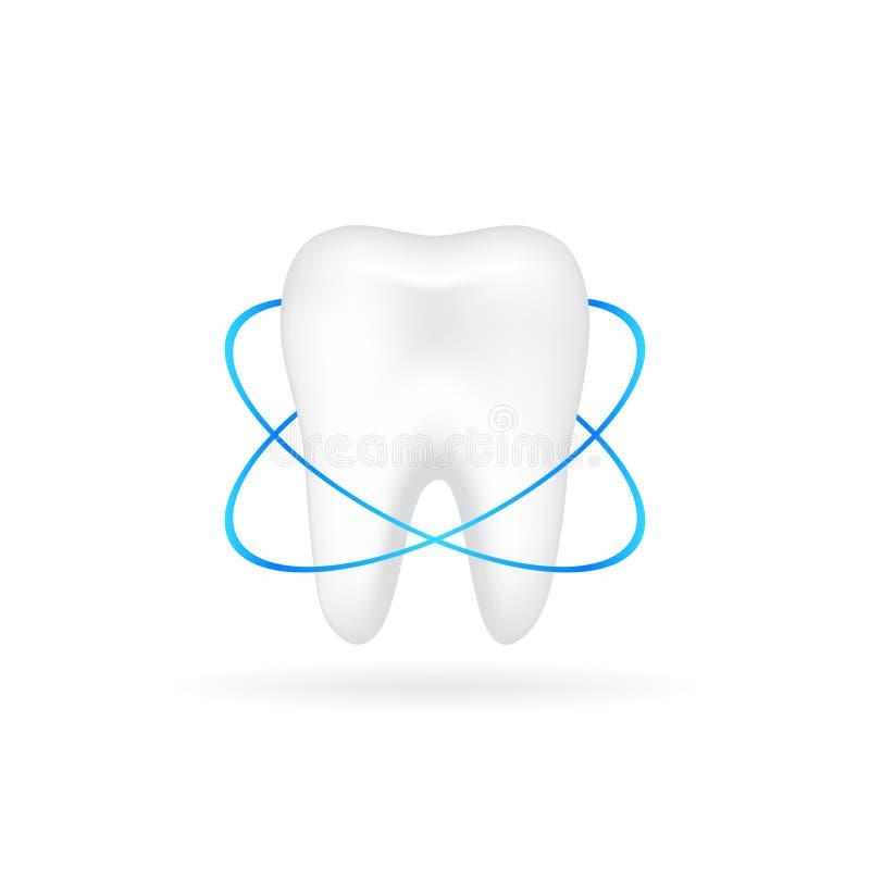 Vektorillustration av den realistiska tanden royaltyfri illustrationer