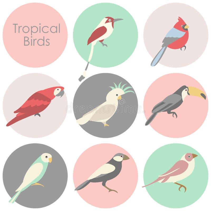 Vektorillustration av den tropiska fågelsymbolen royaltyfri illustrationer