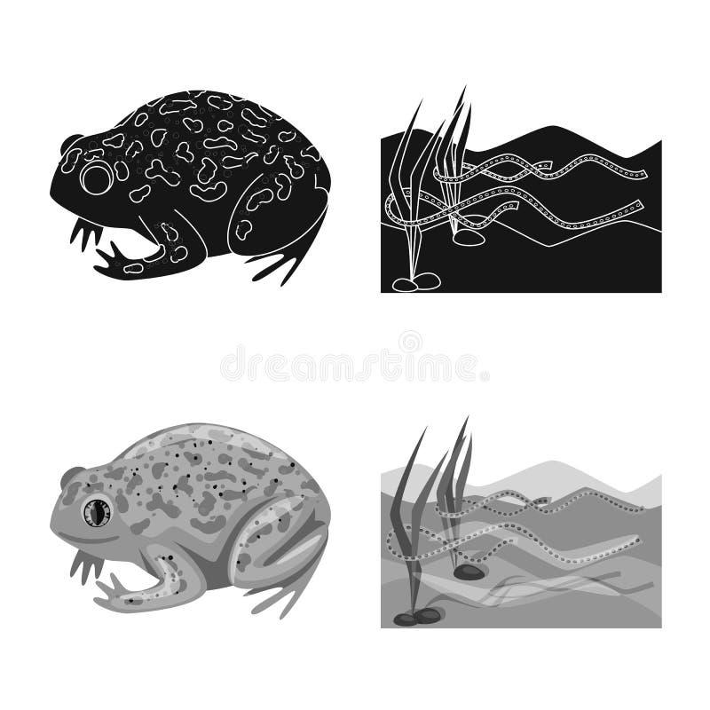 Vektorillustration av djurliv- och myrsymbolen St?ll in av illustration f?r djurliv- och reptilmaterielvektor vektor illustrationer