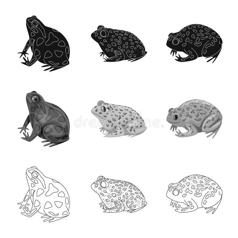 Vektorillustration av djurliv- och myrsymbolet Samling av djurliv- och reptilmaterielsymbolet f?r reng?ringsduk stock illustrationer