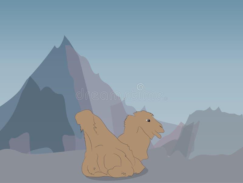 Vektorillustration av en kamel som ligger på naturen royaltyfri foto