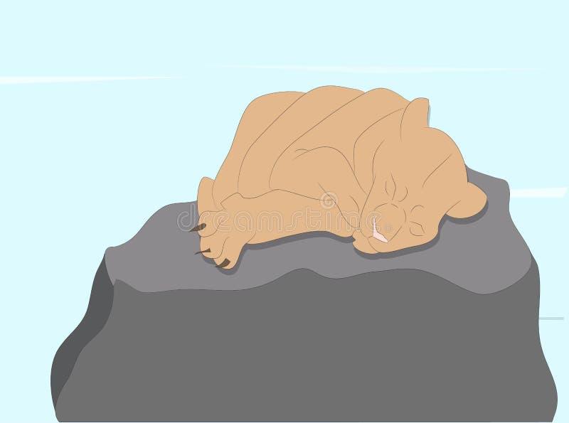 Vektorillustration av en lejoninna som sover, dra färg royaltyfri fotografi