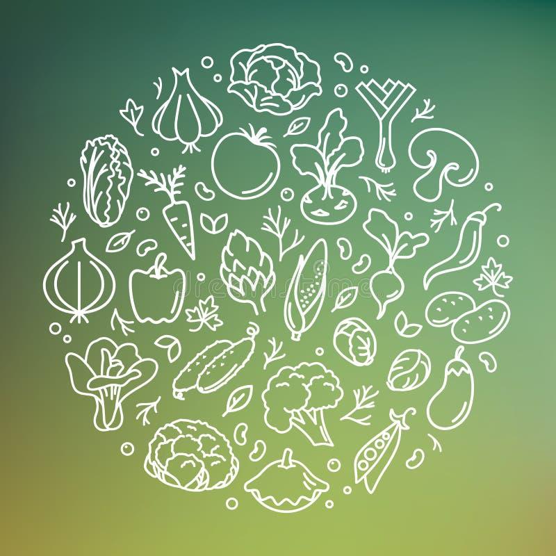 Vektorillustration av grönsaken i cirkeln vektor illustrationer