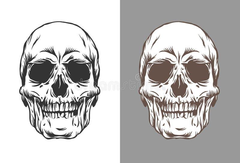 Vektorillustration av mänskliga skallar i att inrista svart och brun färg för stil som isoleras på vit och grå bakgrund royaltyfri illustrationer