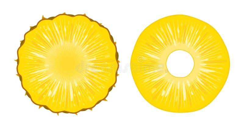 Vektorillustration av mogna saftiga ananasskivor som isoleras på vit bakgrund En snittcirkel av ny exotisk frukt stock illustrationer