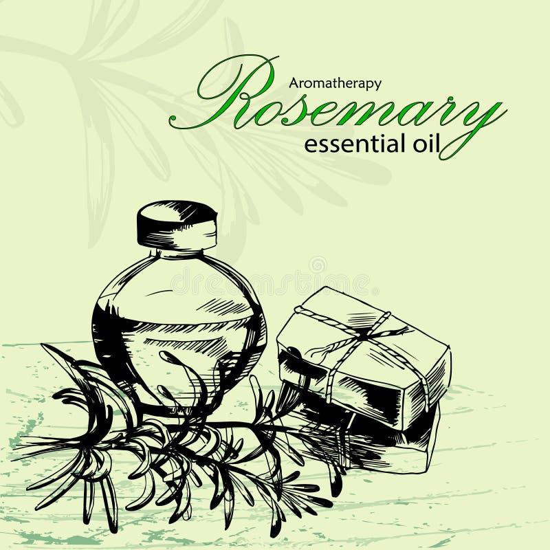 Vektorillustration av nödvändig olja av rosmarin stock illustrationer