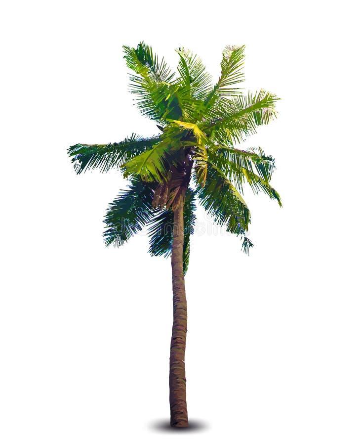 Vektorillustration av palmträdet stock illustrationer