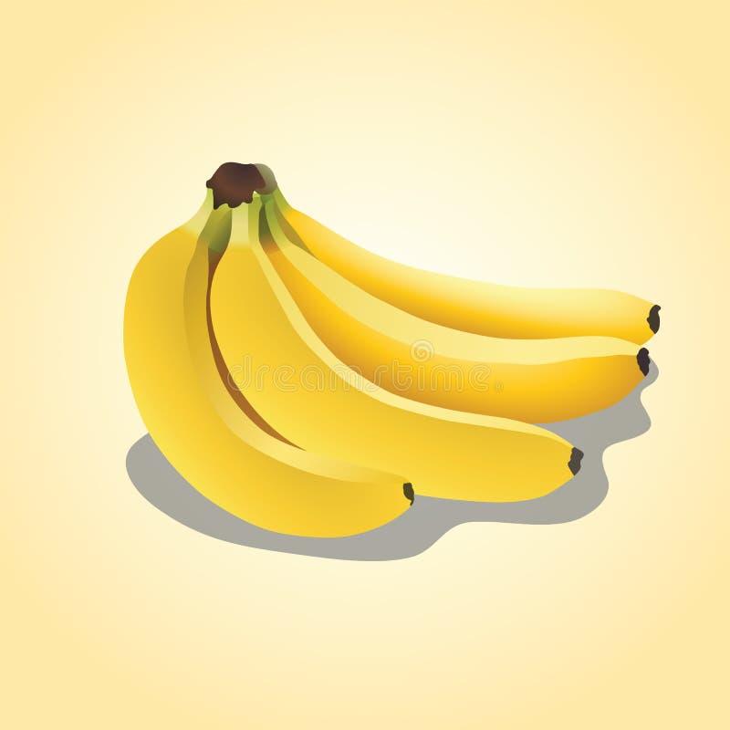 Vektorillustration - Banane lizenzfreie stockbilder