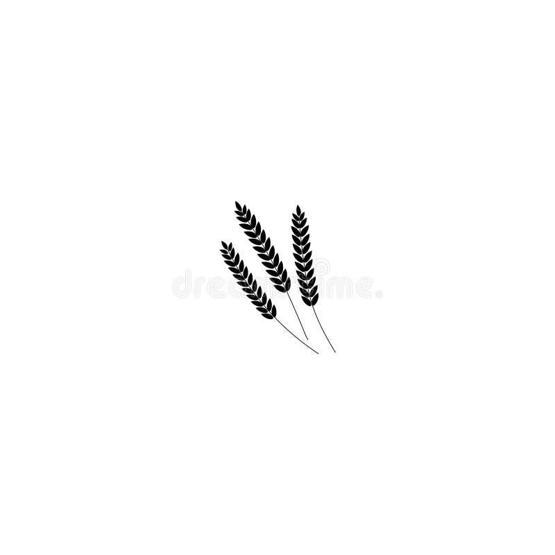 Vektorillustration des ganzen Kornes der Weizen-, Roggen- oder Gerstenohren, schwarze Schattenbildsymbolikone lokalisiert auf wei lizenzfreie abbildung
