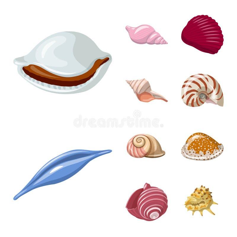 Vektorillustration des Muschel- und Molluskensymbols Stellen Sie Vektorillustration der Muschel und der Meeresfr?chte von der auf stock abbildung