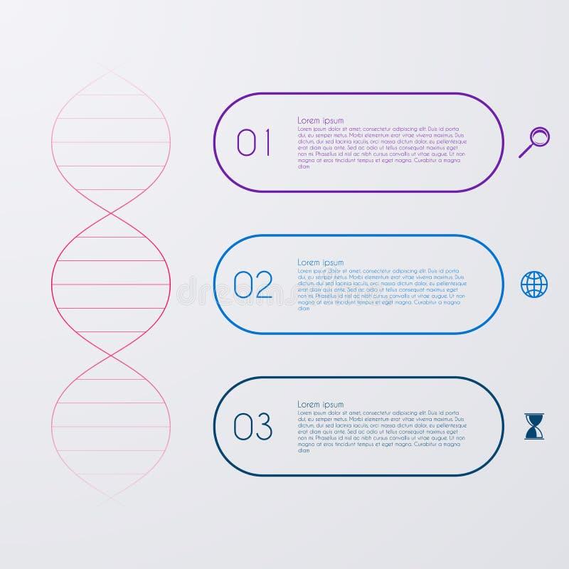 Vektorillustration eines DNA-Molekül infographics stock abbildung